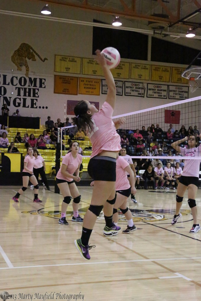 Sophia Madalini makes the spike during the JV game in Tiger Gym Saturday afternoon.