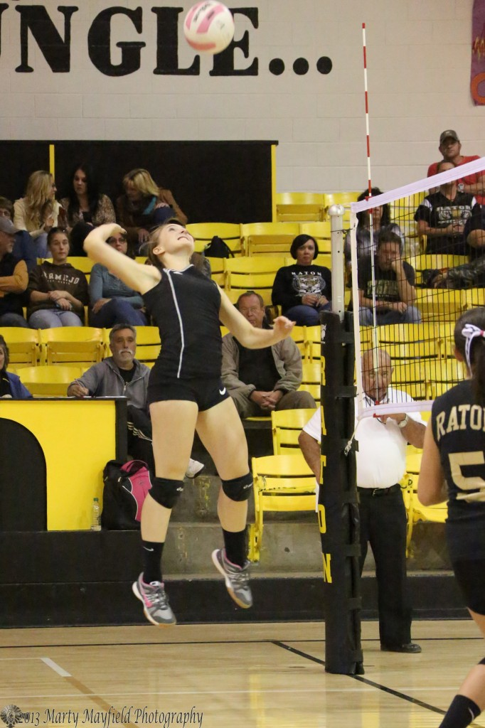 Up High, Mikala Vertovec prepares for the spike over the net during the match with Taos Saturday afternoon in Tiger Gyn