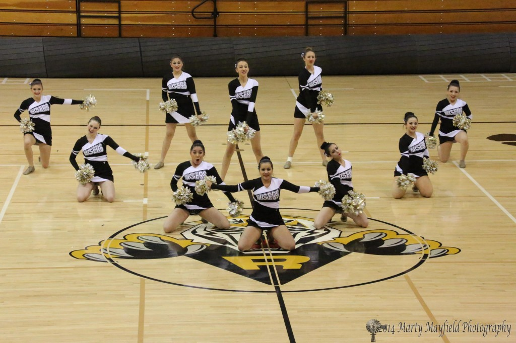 The RHS Tiger Cats Dance Team performs their state Spirit Competition routine at Tiger Gym Tuesday night in front of an enthusiastic crowd.