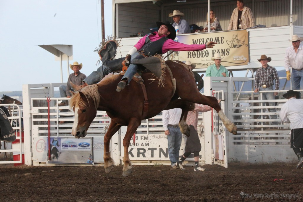 Bareback Bronc riding as this cowboy makes it look easy