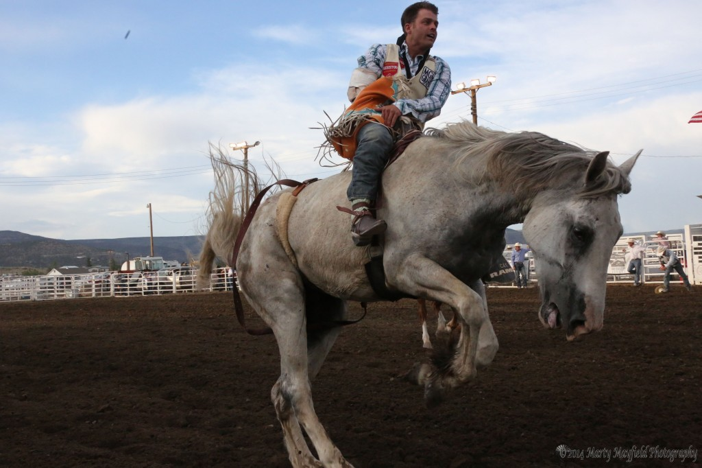 Pueblo Cowboy Casey Colleti makes the 8-second ride and is waiting for the pickup men to work their way over.