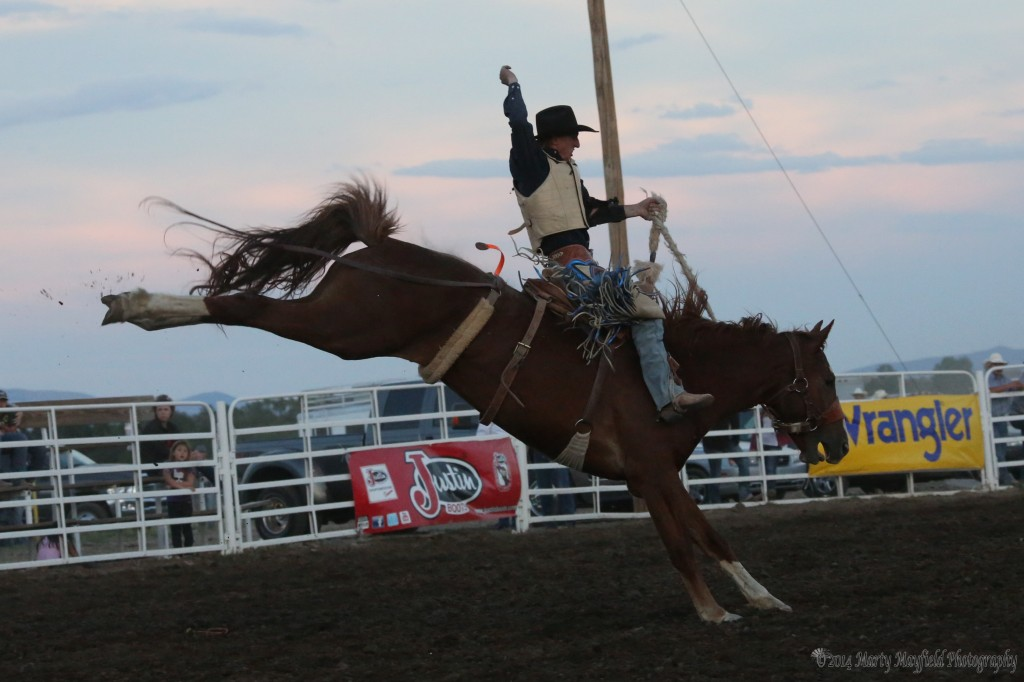 Allen Boore one of the few riders to make a complete 8 seconds in the saddle bronc riding Saturday night at the 36th Annual Raton Rodeo