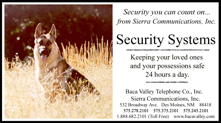 Bacavalley Add Security ad 5x2 2014