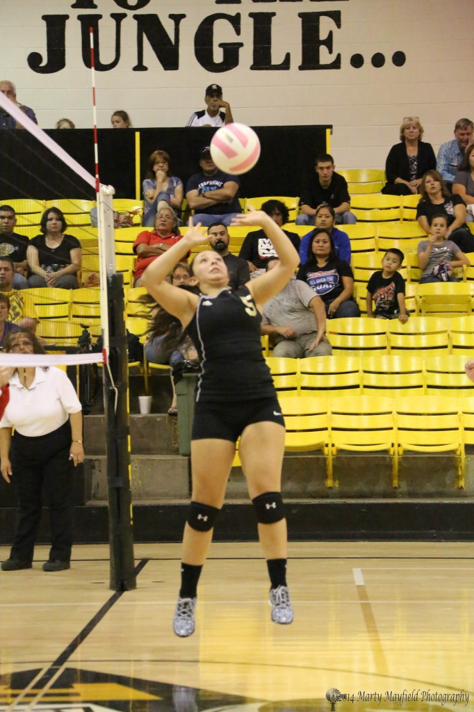 Sophia Maddaleni also plays setter for the Lady Tigers