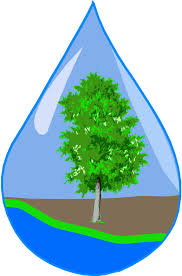 water & soil logo