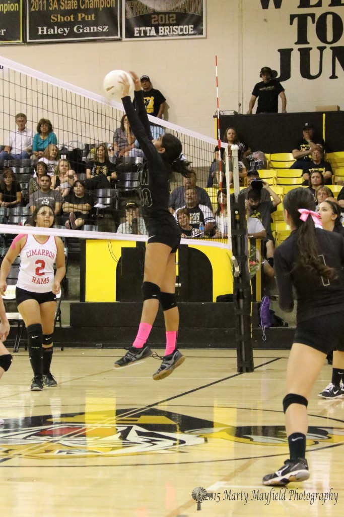 Autumn Archuleta makes the block at the net for the Lady Tigers