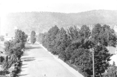 Street leading to Emagene Saracino's home in Dawson