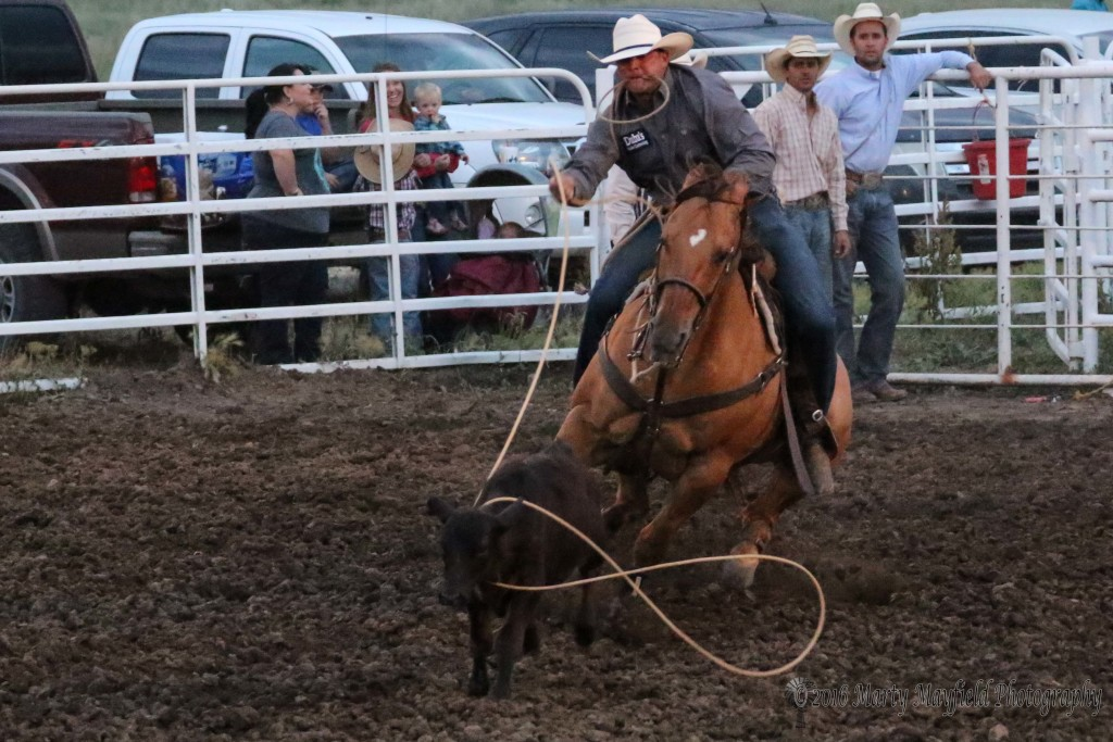 The big loop makes a figure 8 as Trell Etbauer catches his calf and makes the tie in 8.1 seconds for a first place in the tie-down roping Friday night