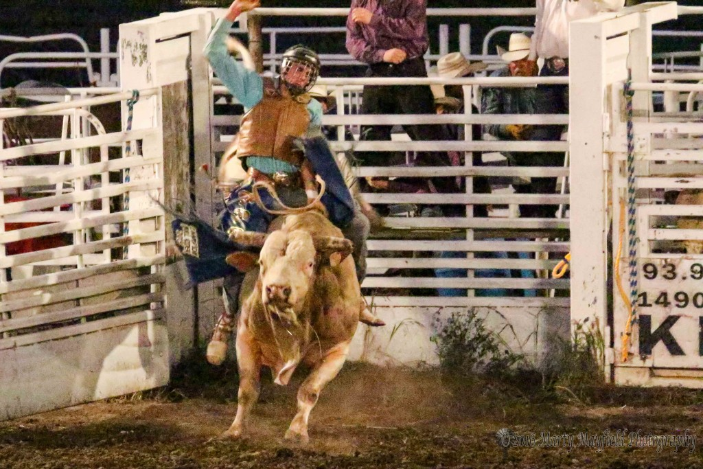 Cody Strite won last year's Raton Rodeo but the bull had other ideas as Strite soon found the dirt well before the 8-second buzzer sounded at the 2016 Raton Rodeo.