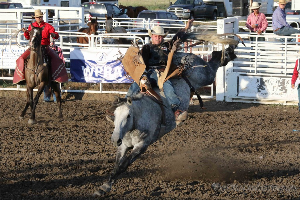 Pueblo Colorado Cowboy Bob Reynolds was the only cowboy to make the 8-second ride Saturday evening at the Raton Rodeo where he scored a 65.