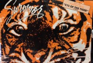 eye of tiger vinyl