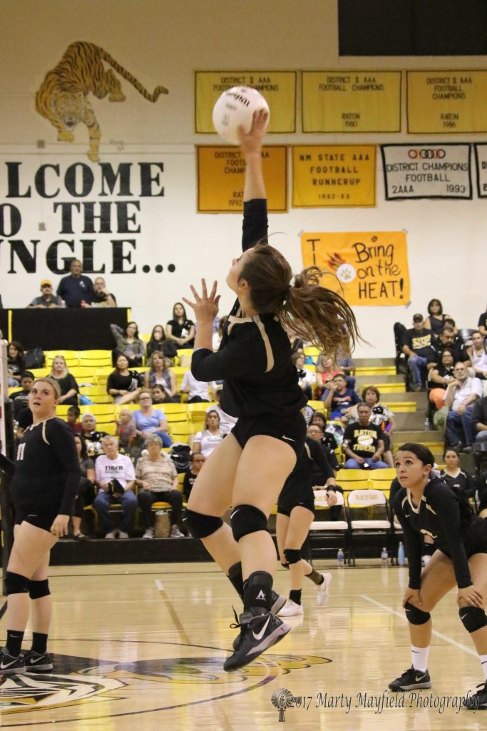 Camryn Stoecker goes up for the spike during the Homecoming game with Clayton in Tiger Gym