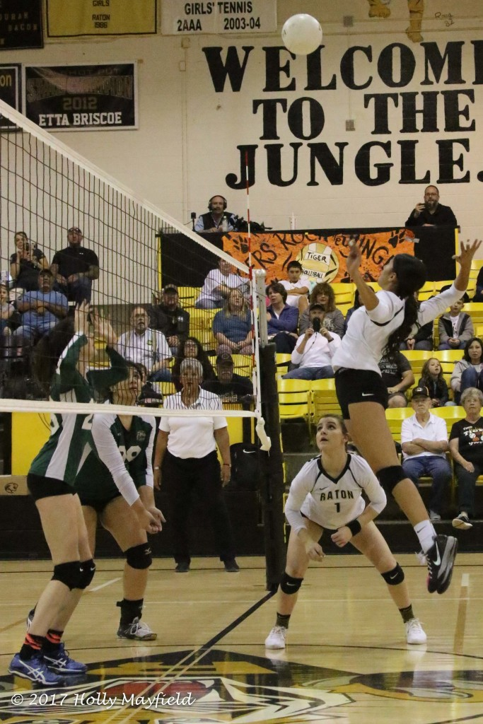 Autumn Archuleta goes up for the spike during Game one of the District Tourney Match Friday night inTiger Gym.
