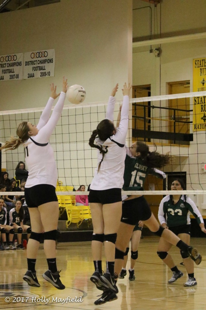 Kerrigan Weese gets the block but as happened so many times during the match the ball falls to the floor on the Tiger side of the net.