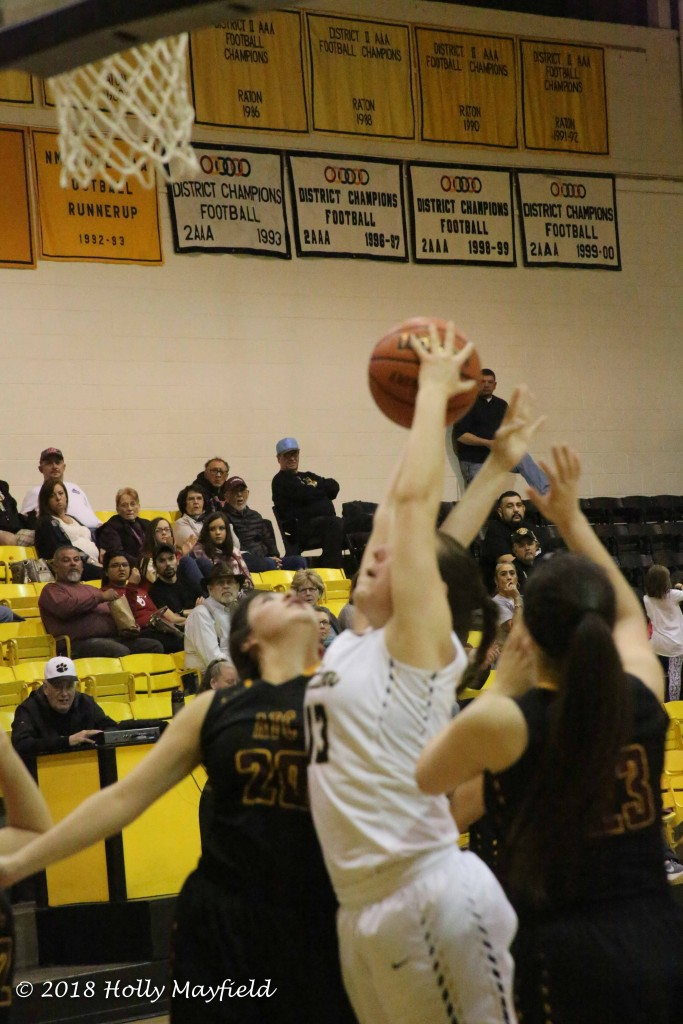 Halle Medina reaches up for the rebound as she did several times during the game Saturday evening in Tiger Gym.