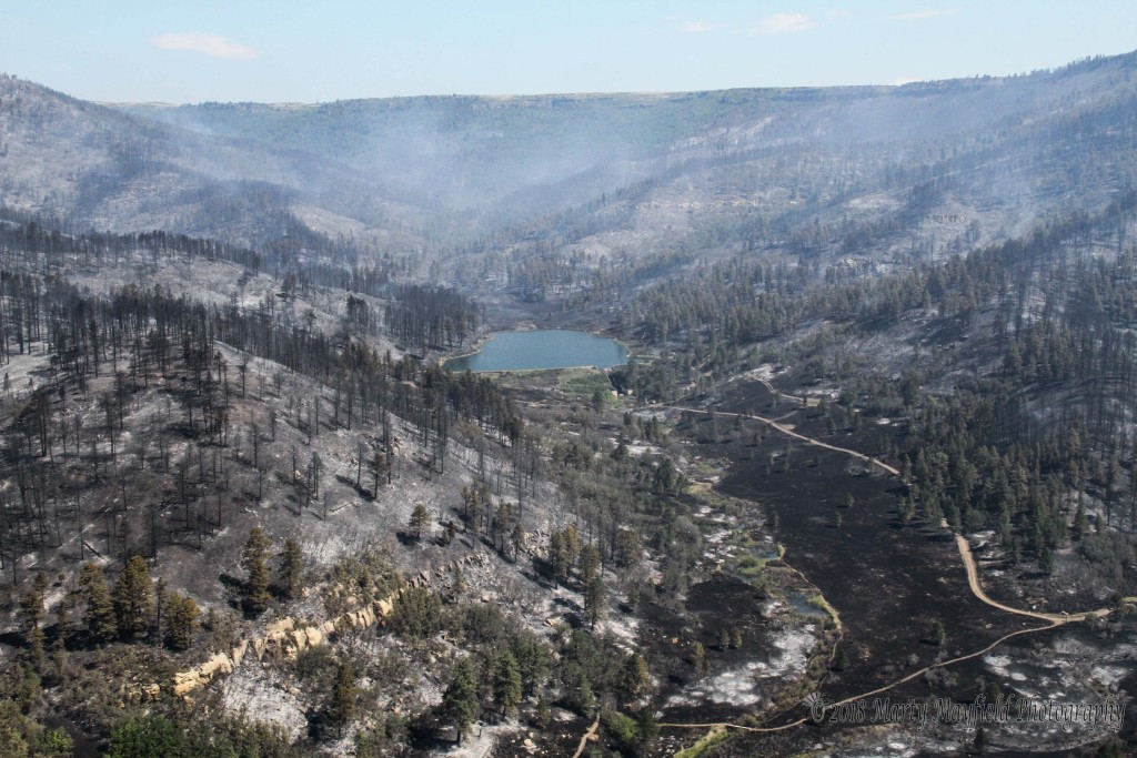 Money from the one cent supplemental gross receipts tax help to rehab the area around Lake Dorothy and Lake Maloya after the Track Fire.