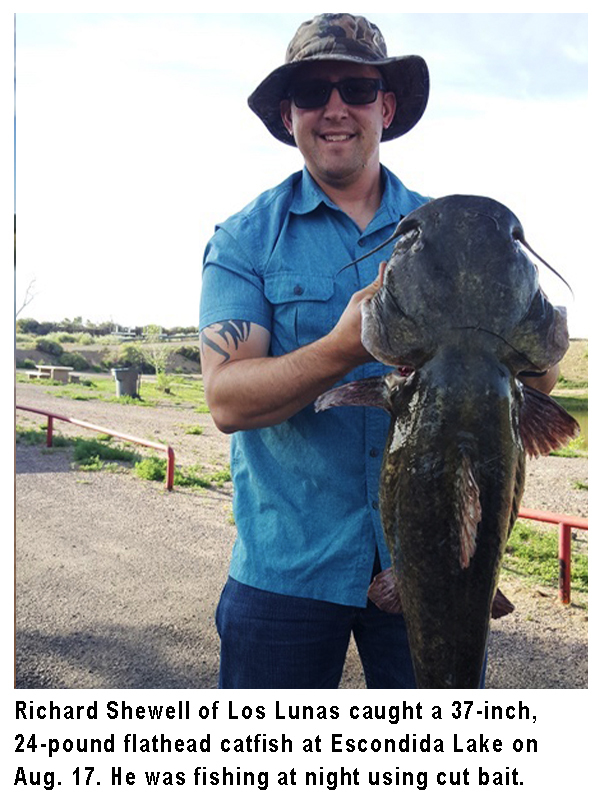 New Mexico fishing and stocking reports for August 20, 2019